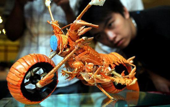 龙虾壳打造的摩托车模型