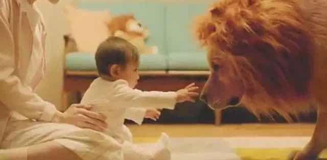 日本亚马逊超感人广告《狗狗扮狮子》