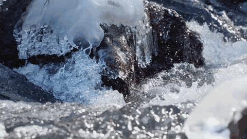 农夫山泉最新广告,长白山拍摄堪比野生动物纪录片
