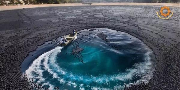 为了不让水库干旱,老外竟向水库投放了9600万个塑料球