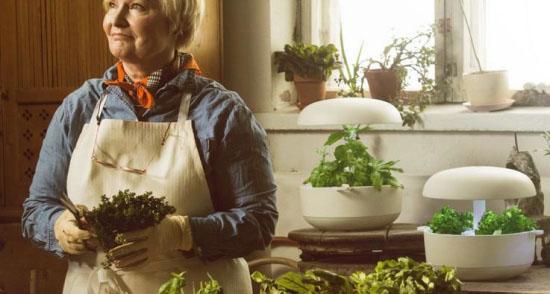 智能花园Plantui 足不出户吃到新鲜蔬菜