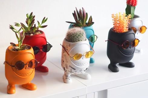时尚的玩偶盆栽