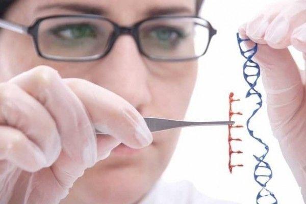 英国科学家发现儿童低智商基因 或可药物治疗-内容详情-玩意儿