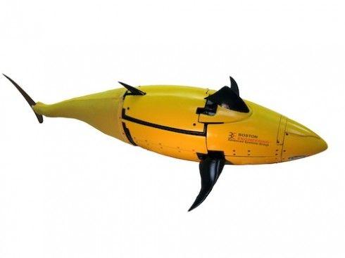 美海军测试仿生机器鱼:摆尾前进可探测水雷