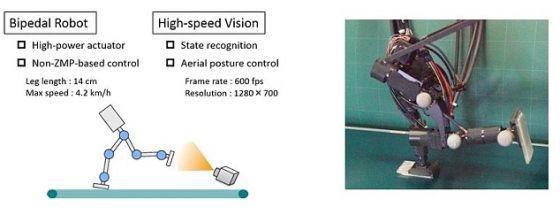 日本研制出两腿高速奔跑机器人