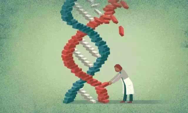 """""""3父母""""婴儿缔造者华裔医生遭美FDA严重警告:必须立刻停止在美开展的临床试验"""