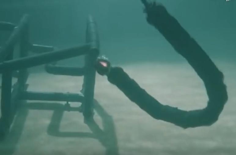 Eelume仿生机器蛇,灵活性与真蛇一样,可完成各类水中工作-玩意儿