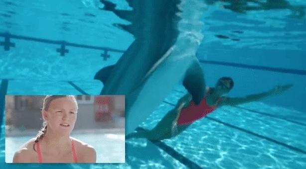 这条假冒海豚价值1.8亿 逼真程度让人惊叹
