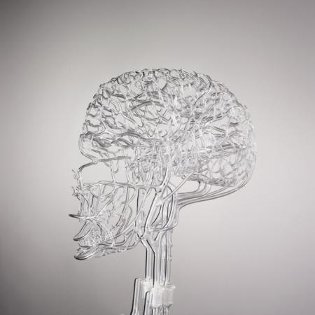 逼真的玻璃血管模型-产品详情-玩意儿
