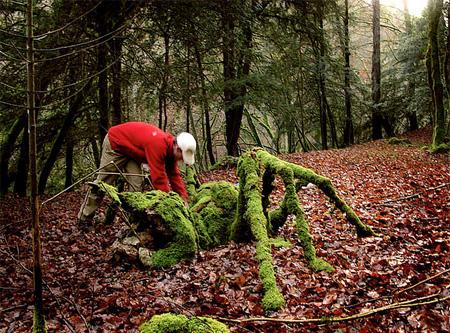 以大自然为画布的艺术作品-产品描述-玩意儿