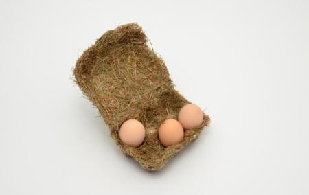 另类干草鸡蛋盒-具体内容-玩意儿