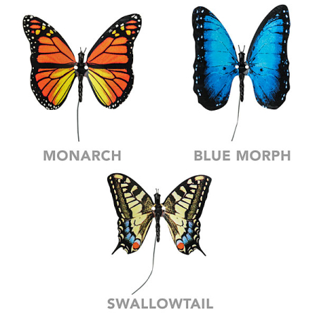 逼真的电子蝴蝶-产品详情-玩意儿