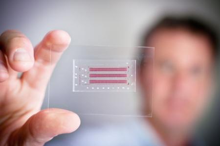 HIV快速检测卡-具体内容-玩意儿