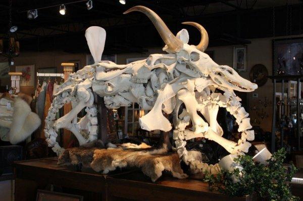 动物骨头制作的摩托车
