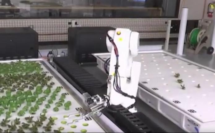种植全靠机器手的无人农场,产量比传统种植高30倍