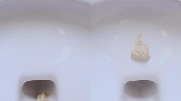 两华人科学家发明不粘马桶,不留痕迹省水省力