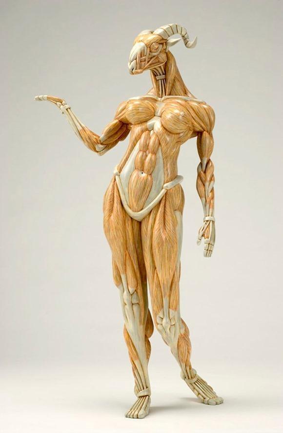 异想天开的解剖雕塑