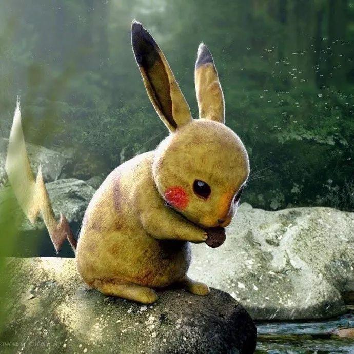 3D写实版宠物小精灵!看后还觉得它们可爱吗?