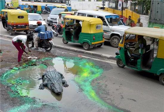 印度艺术家的街头艺术,创作真相令人唏嘘