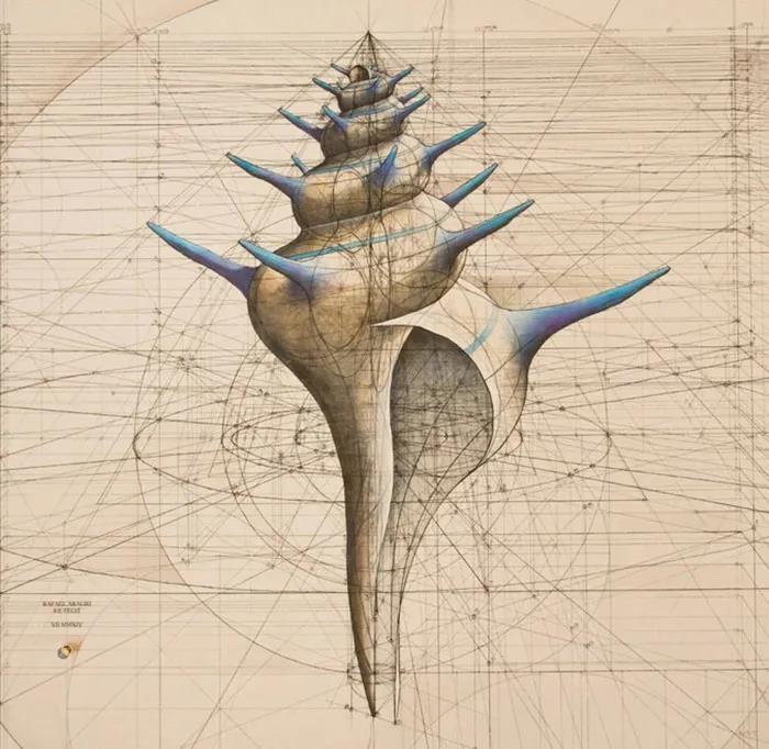 理工男用数学公式绘画 令人叹为观止